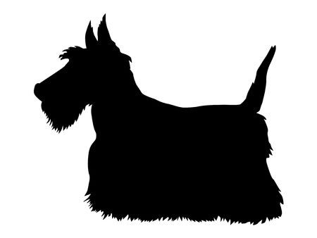 180 Scottie Dog Stock Vector Illustration And Royalty Free Scottie.
