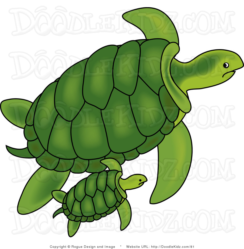 2397 Sea Turtle free clipart.