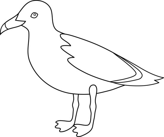 Seagull Clipart Black And White.
