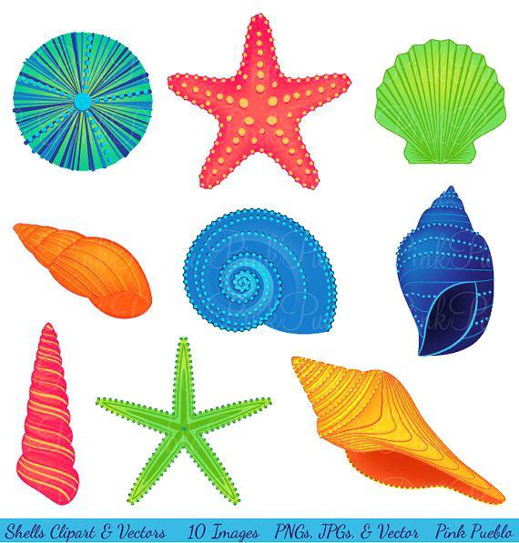 Free seashell clipart 2 » Clipart Station.
