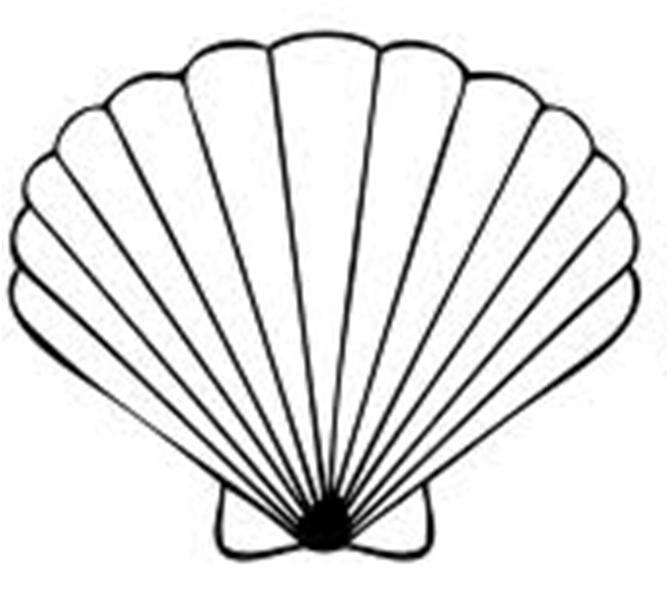Seashell Clip Art Free Printable.