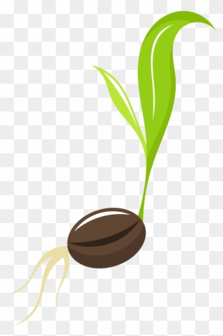 Free PNG Seed Clip Art Download.