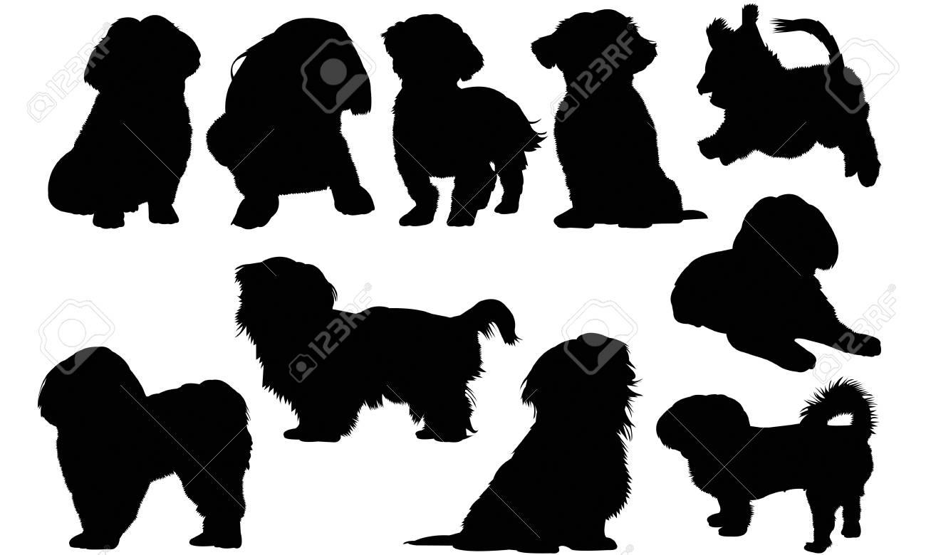 Shih Tzu Dog silhouette illustration.