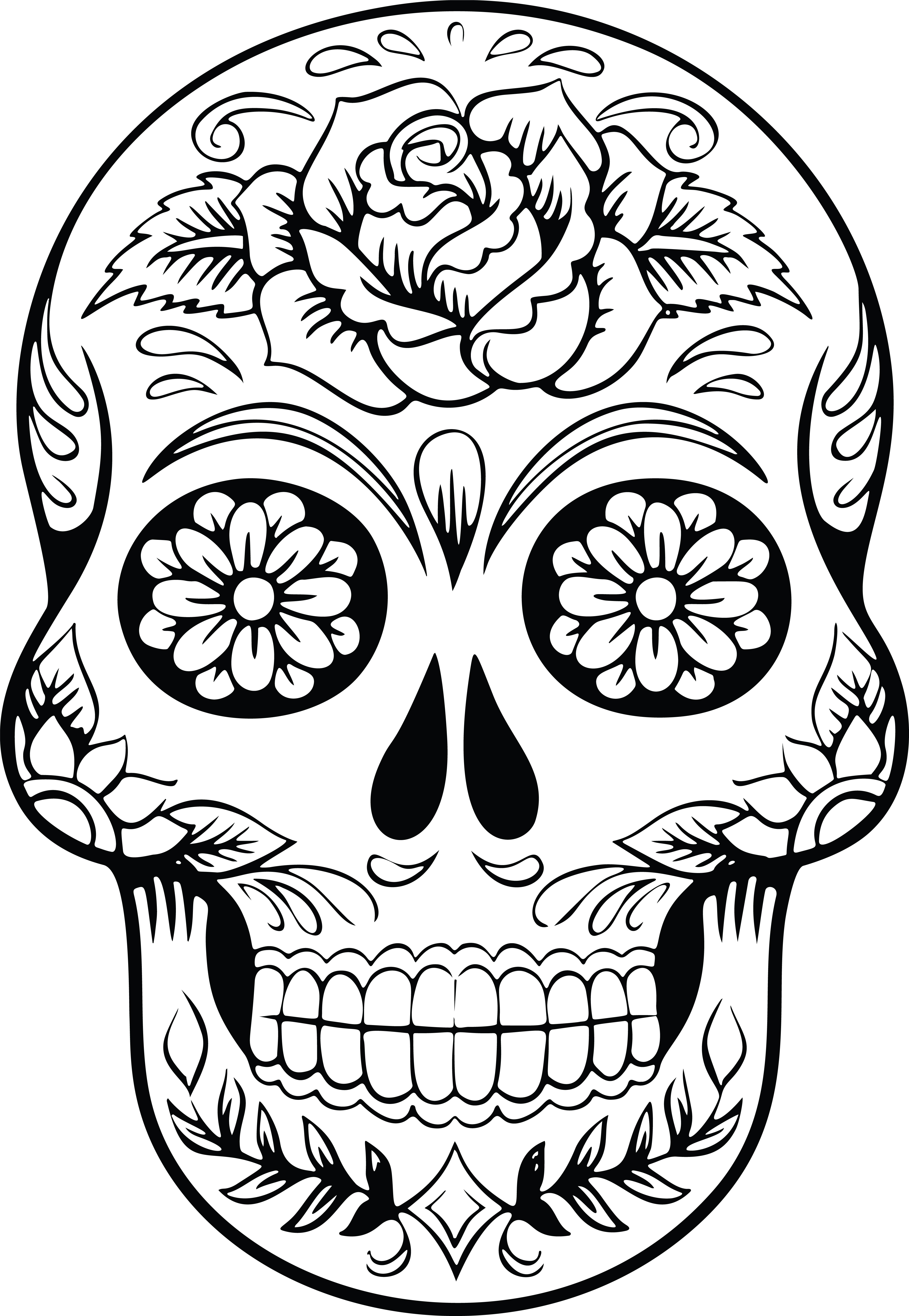Free Skull Clipart Images.