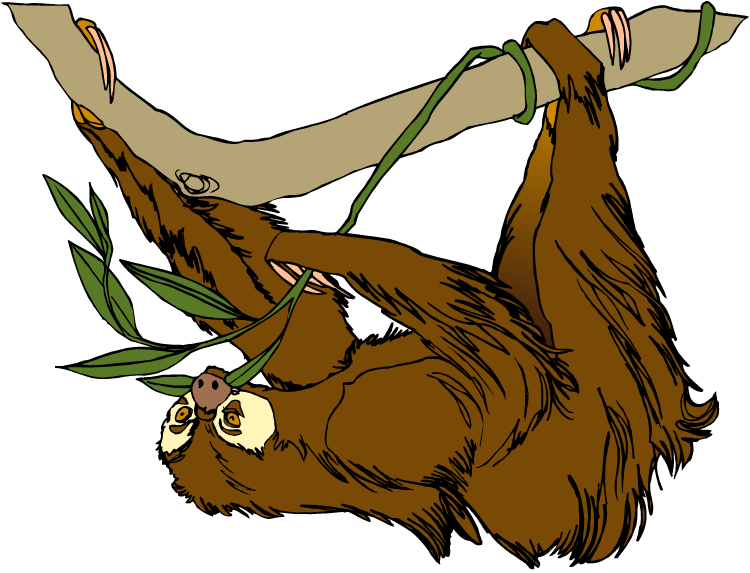 Free Sloth Cliparts Free, Download Free Clip Art, Free Clip.