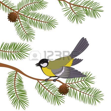 273 Chickadee Cliparts, Stock Vector And Royalty Free Chickadee.