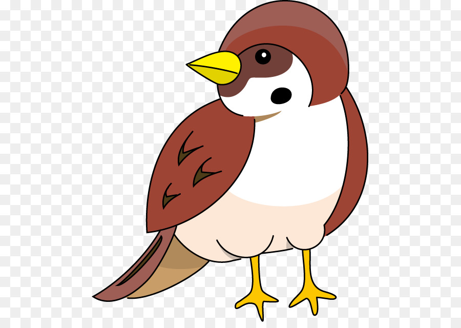Bird Clipart png download.