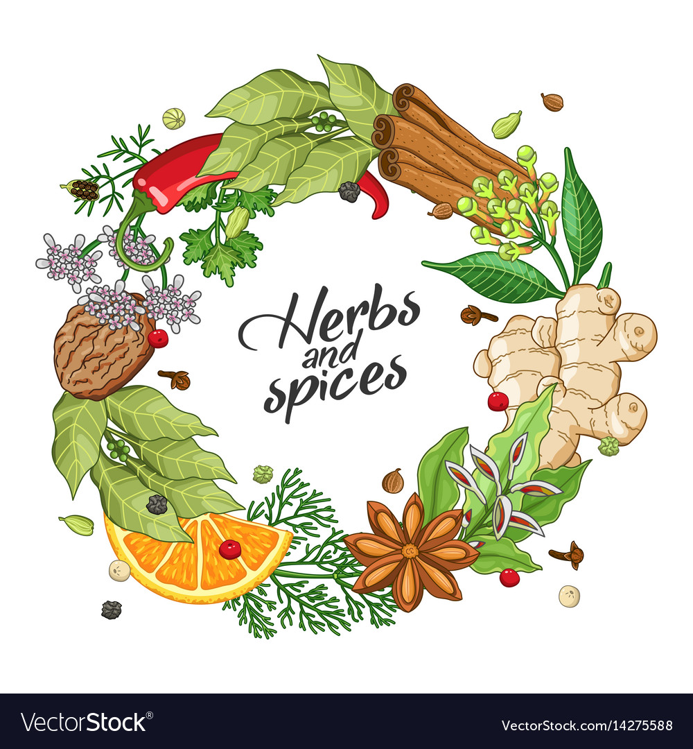 Winter circle template with spices herbs.