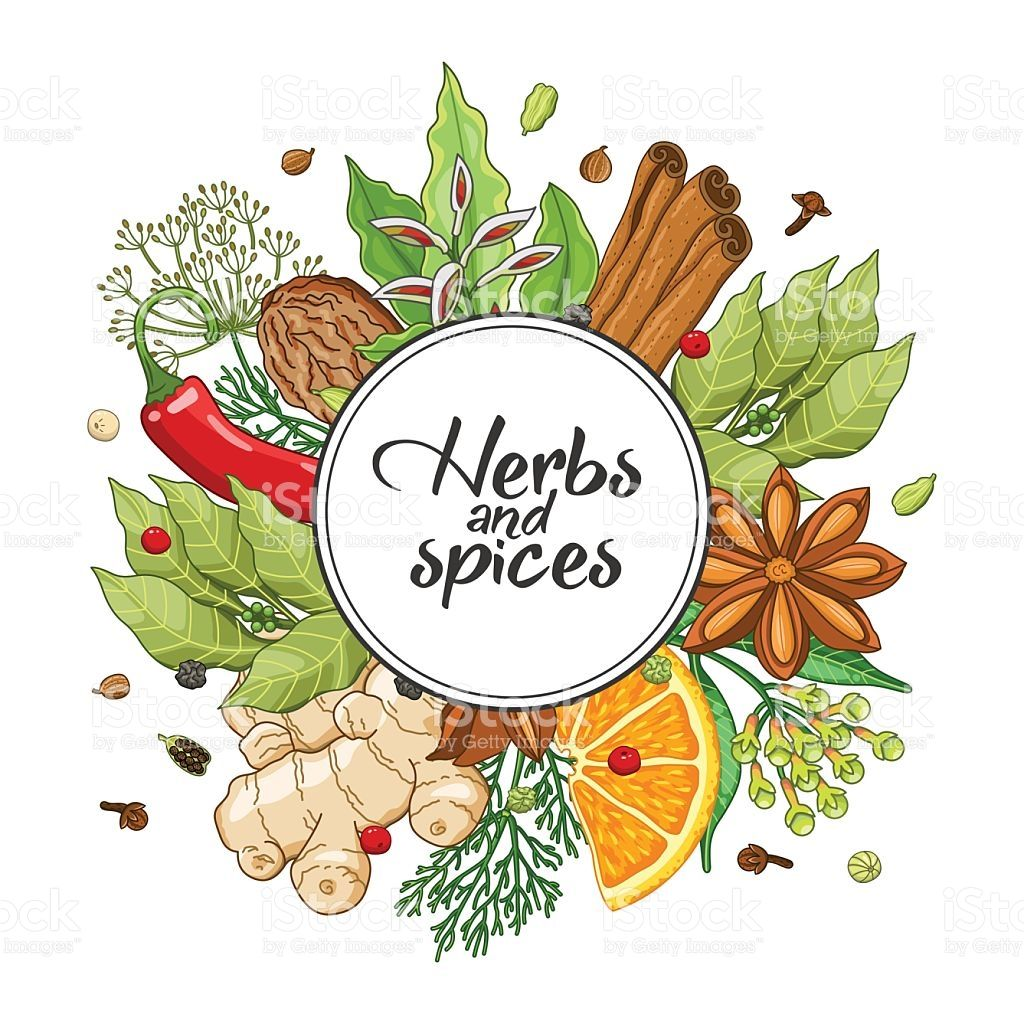 Vector winter round design with spices and herbs. Decorative.
