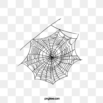 Spider Webs Png, Vector, PSD, and Clipart With Transparent.