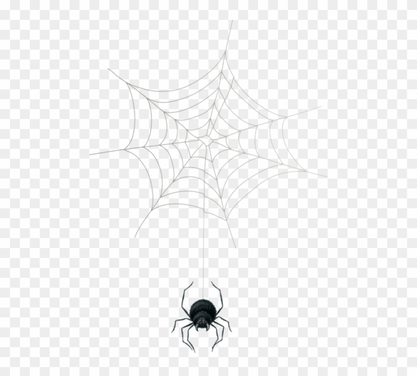 Free Png Download Spider Web Png Png Images Background.
