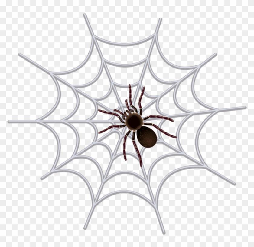 Free Png Download Spider Web Transparent Png Images.