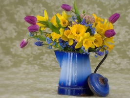Spring flowers wallpaper nature wallpapers for free download about.