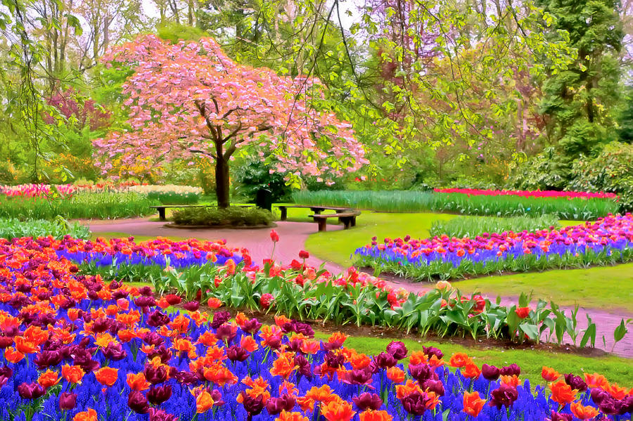 Spring Background Flowers Hd Free download.