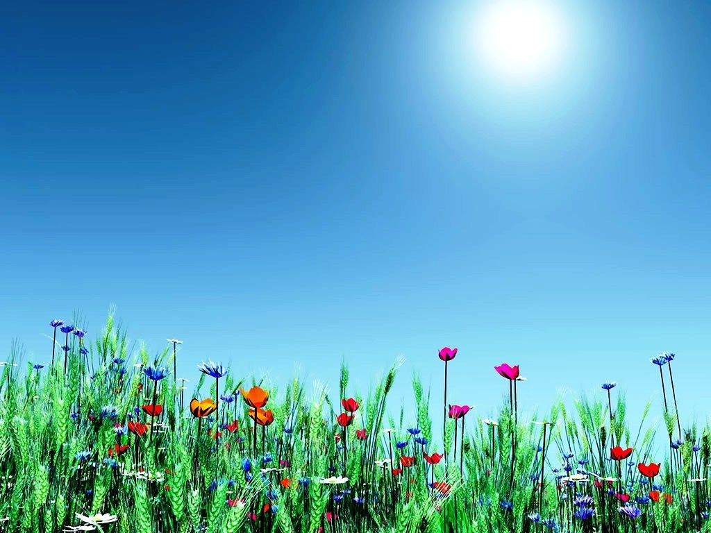 Free Spring Backgrounds Desktop.