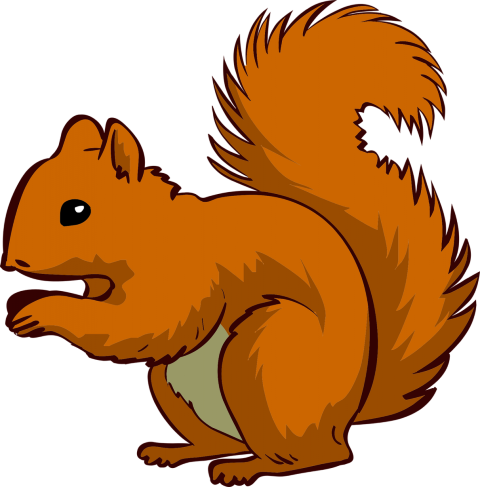 Cartoon Squirrels Pictures.