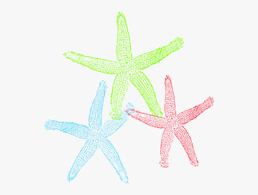 Starfish Free To Use Clipart.