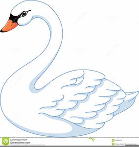 Baby Swan Clipart.