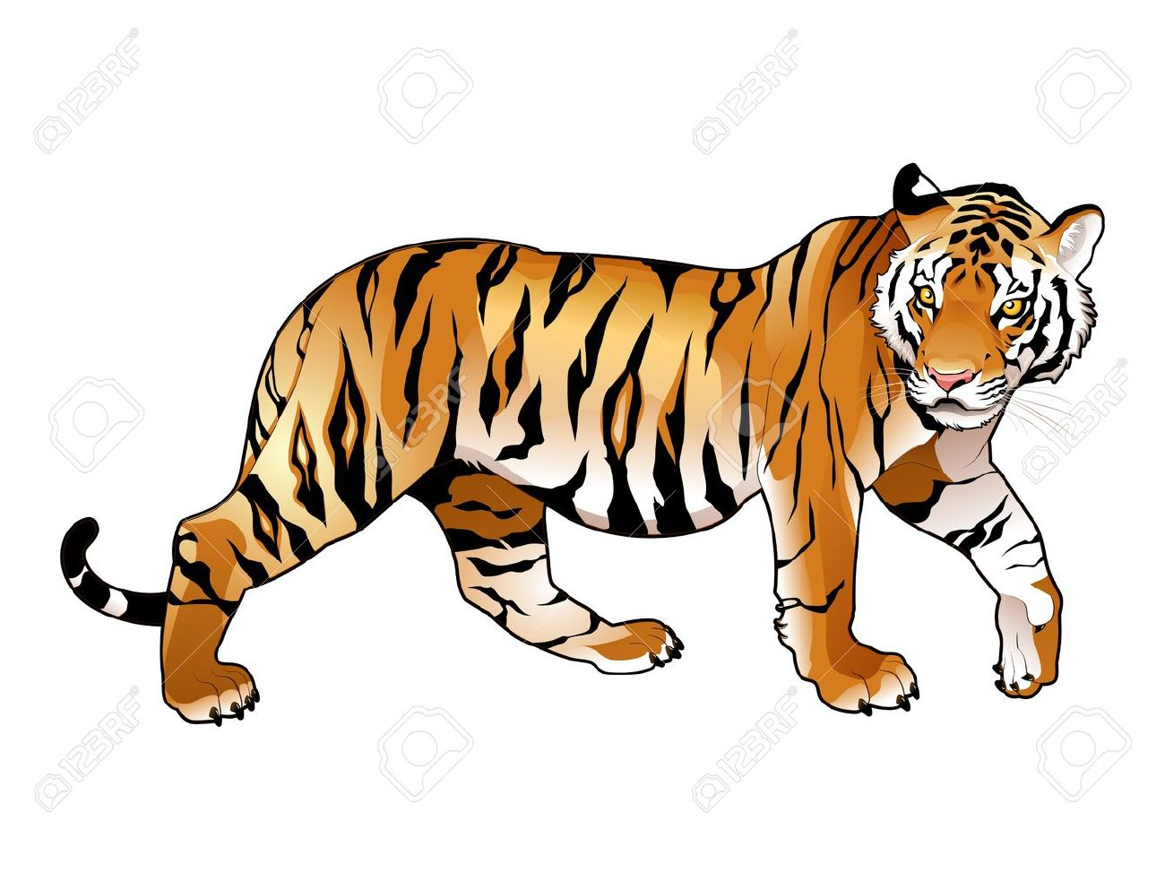 Free tiger clipart 4 » Clipart Station.