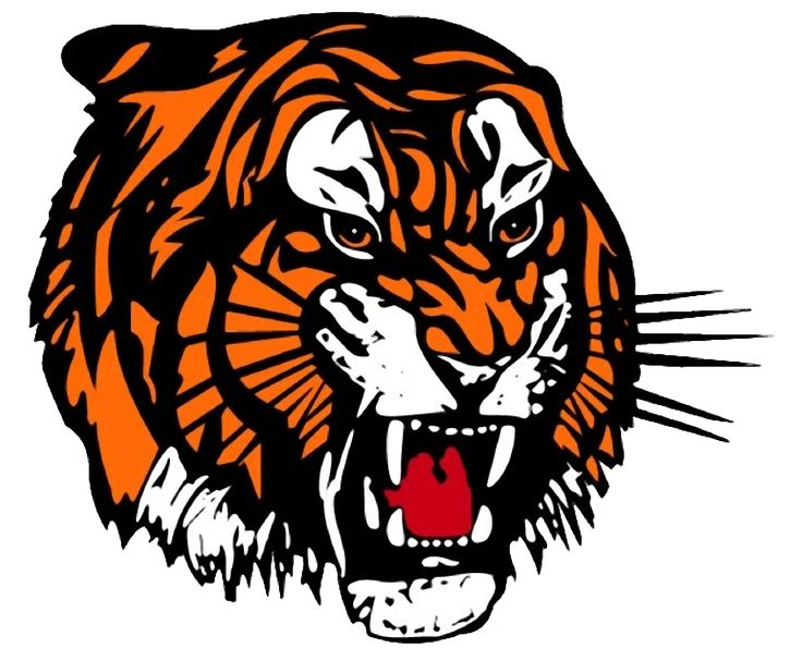 Tigers Clip Art & Tigers Clip Art Clip Art Images.