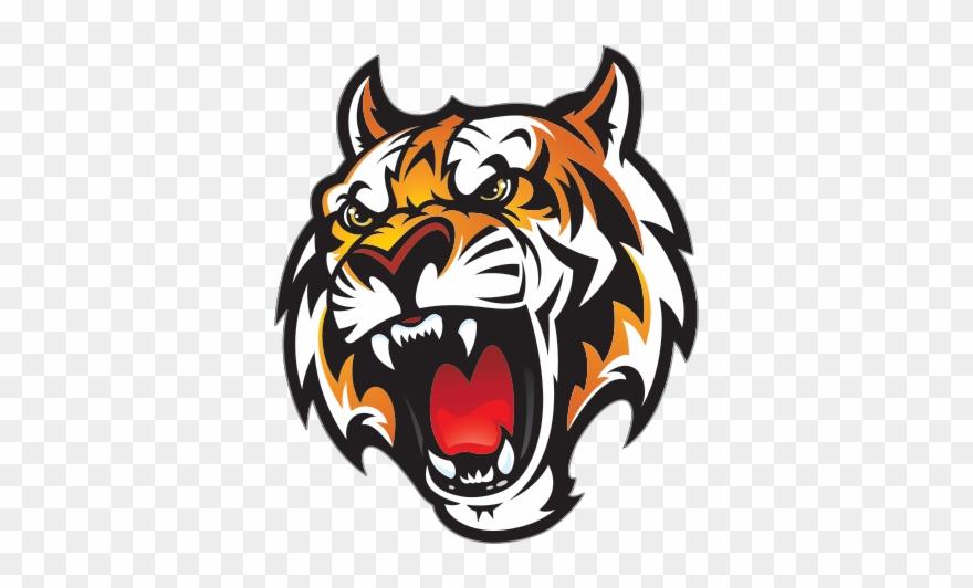 Tiger Head Png.