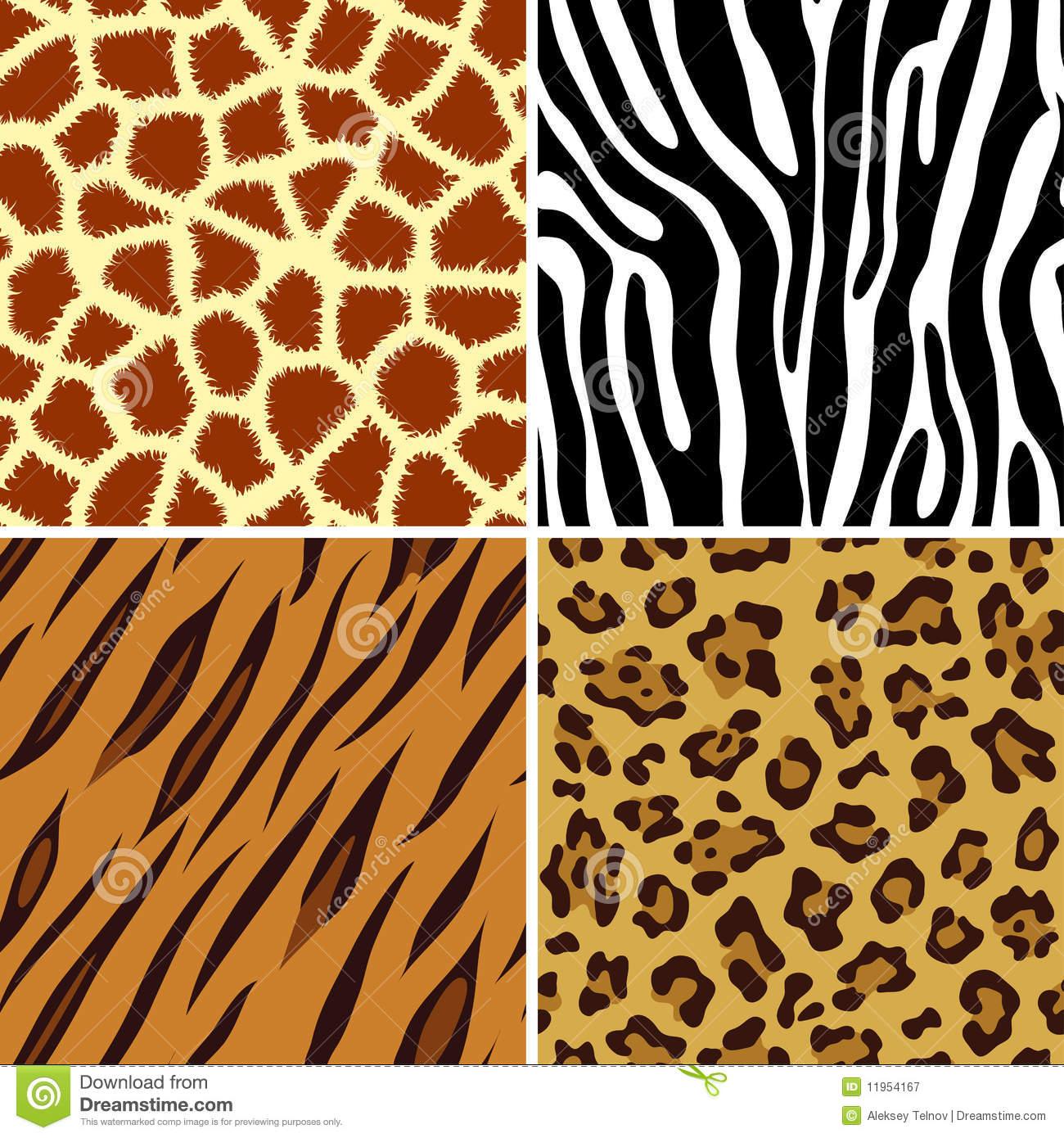 Leopard Stock Illustrations.