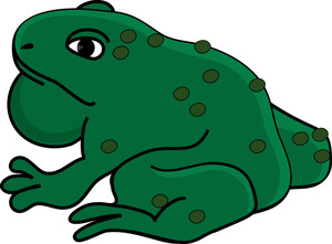 Free Toad Clipart Image 0515.