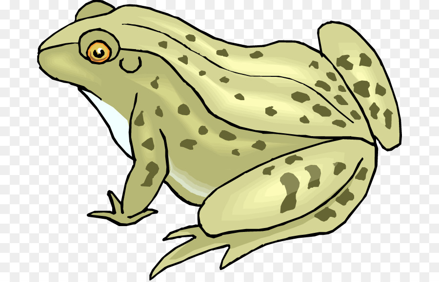 Frog And Toad Clip Art Png Download 750 578 Free Top Terrific 4.