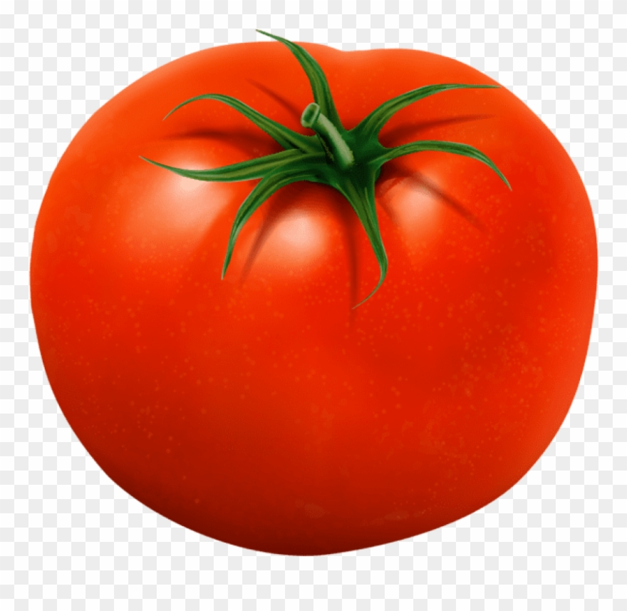 Free Png Download Tomato Transparent Png Images Background.