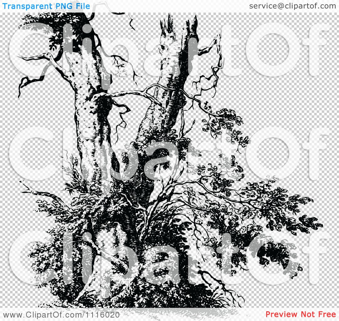 Free Tree Clipart Black And White Broken Tree.