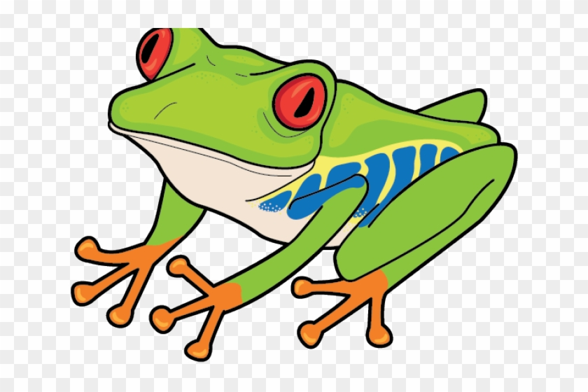 Red Eyed Tree Frog Clipart, HD Png Download (#1389300), Free.