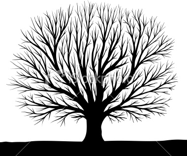 Free Tree Silhouette Clipart Clipground