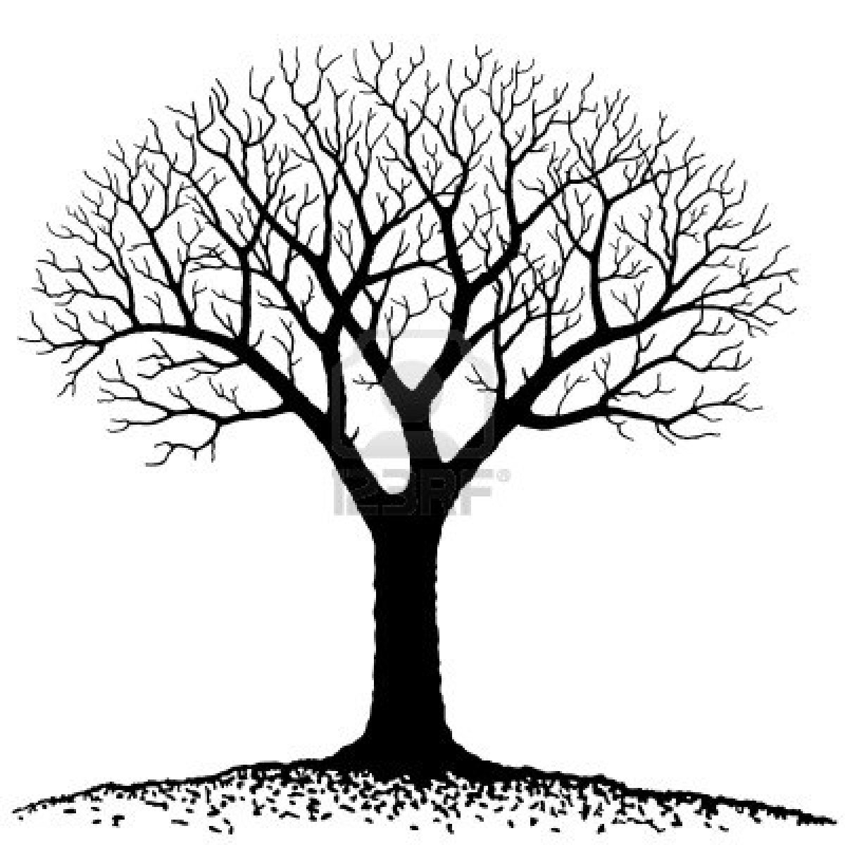 Bare Tree Royalty Free Cliparts Vectors And Stock Illustration.