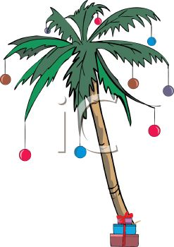 Palm Tree Decorated for a Tropical Christmas.