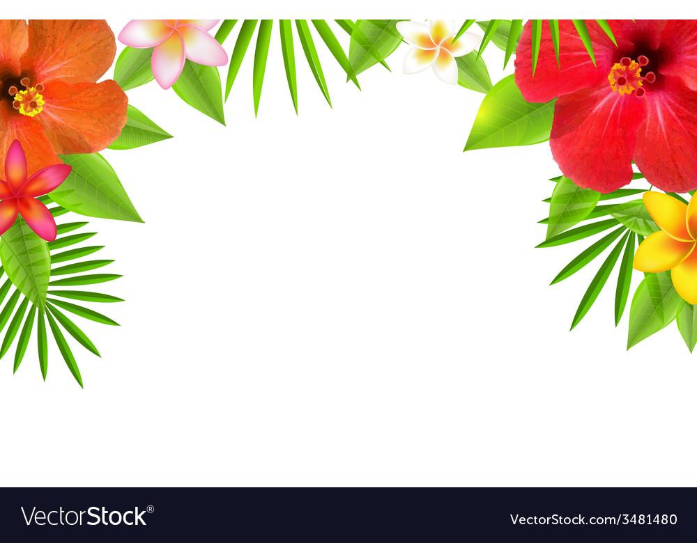 Tropical Flowers Border.