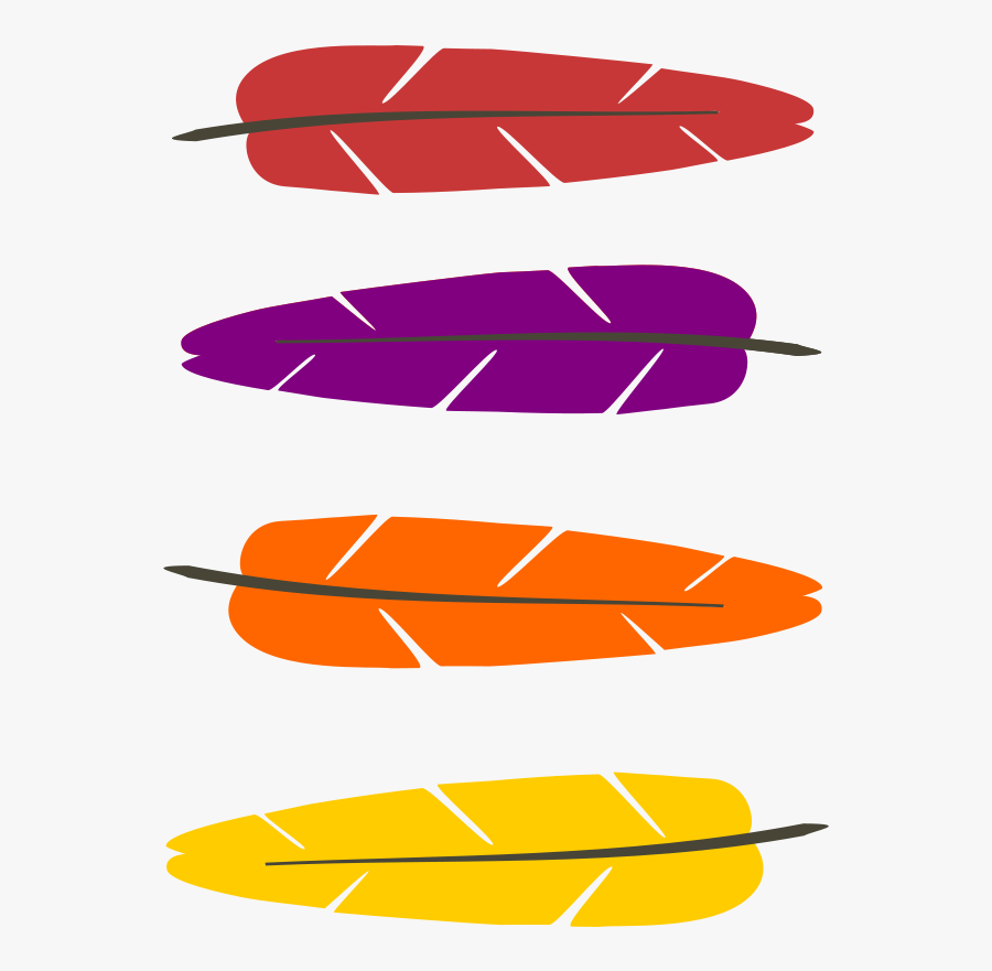 Colored Feathers.