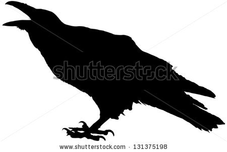 Crow Stock Images, Royalty.