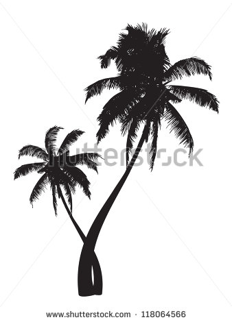 Palm tree free vector download (4,615 Free vector) for commercial.
