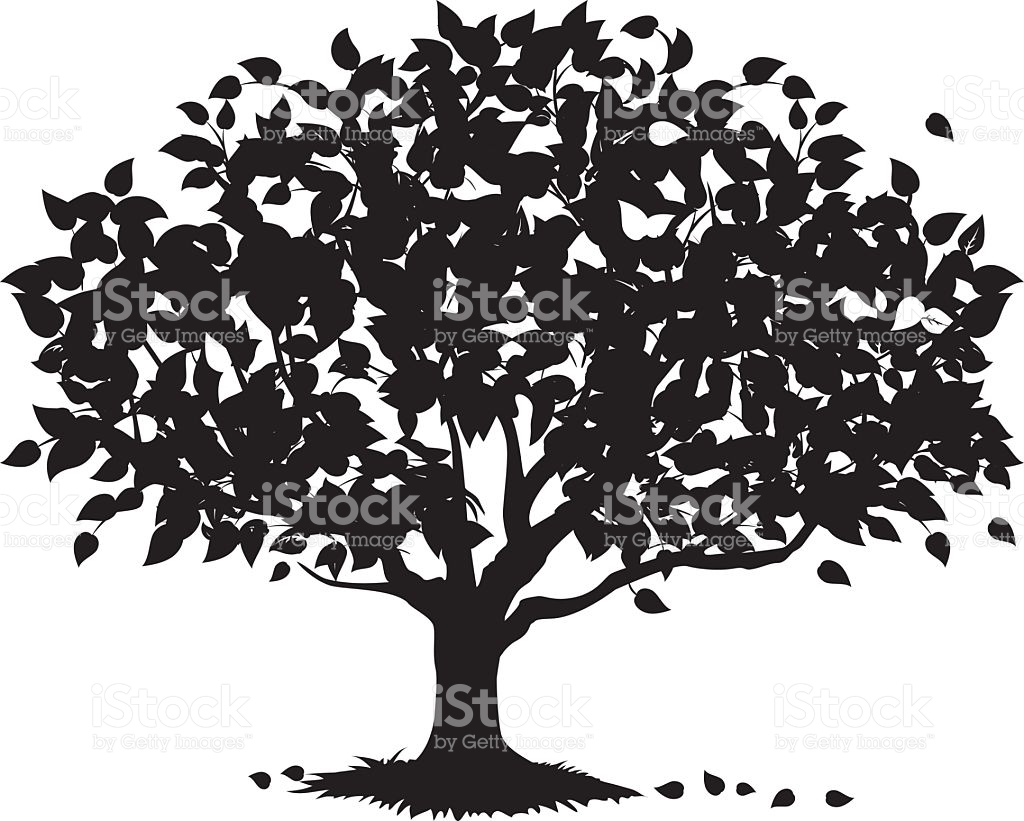 Shade Tree Silhouette stock vector art 163907187.