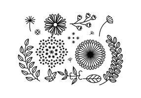 Flowers Free Vector Art.