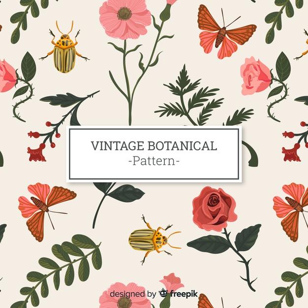 Vintage botanical pattern Vector.