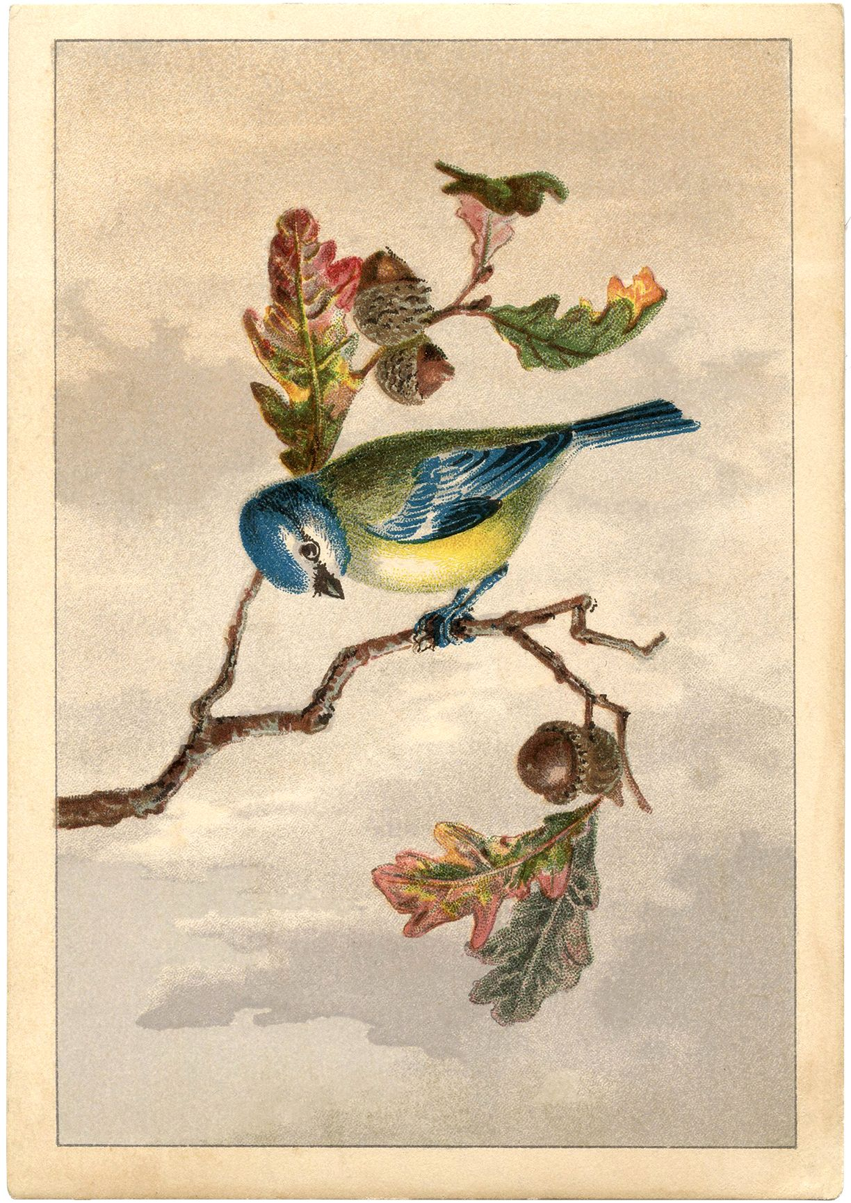 Free Vintage Bird Clip Art.