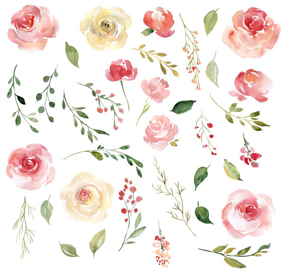 Blush Watercolor Floral Clipart Free Commercial Use Pink.