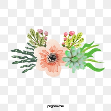 Watercolor Flowers Png, Vector, PSD, and Clipart With Transparent.