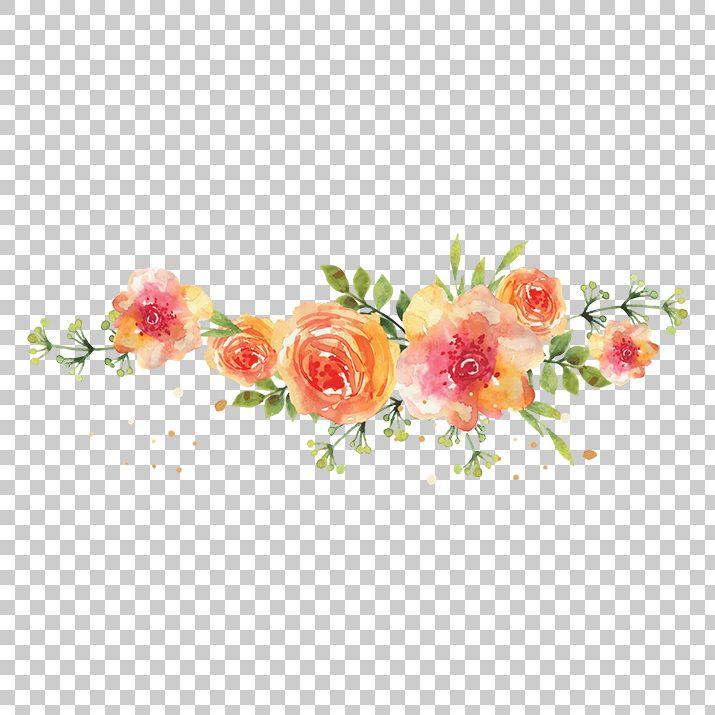 Watercolor Flowers Png Image Free Download searchpng.com.