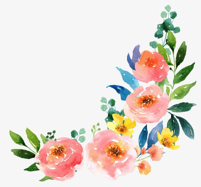 Watercolor Flowers PNG, Clipart, Backgrounds, Blossom, Botany, Bou.