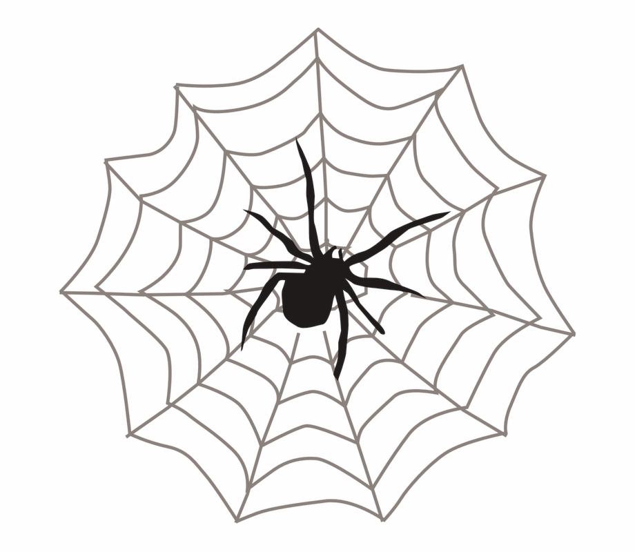 Teia Spider Man Png.