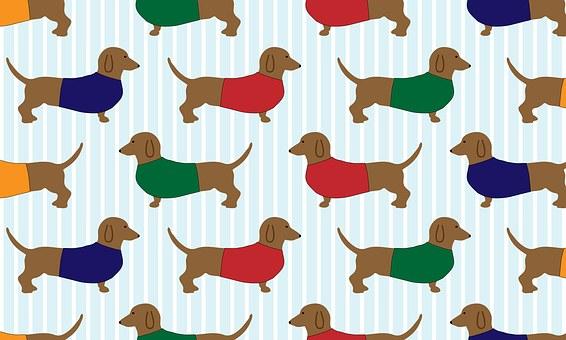 200+ Free Dachshund & Dog Images.
