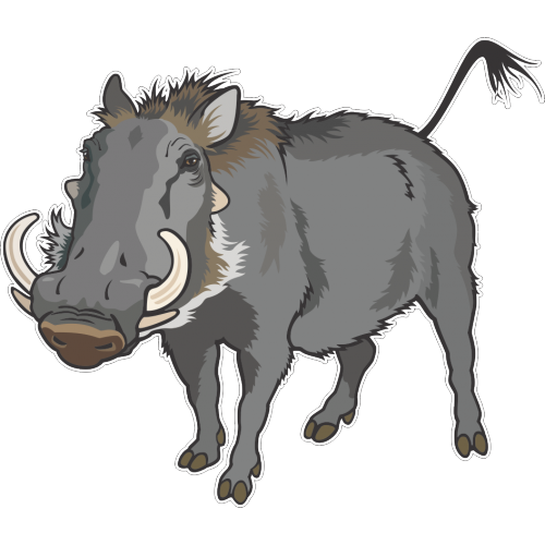 Common warthog Wild boar Clip art Vector graphics.