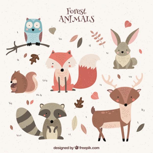 Woodland Animals Vectors, Photos and PSD files.